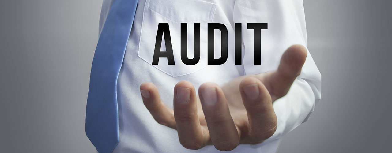Audit Blog Banner